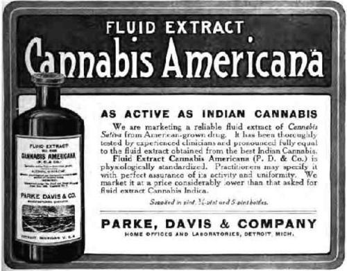 Fluid Extract - Cannabis Americana